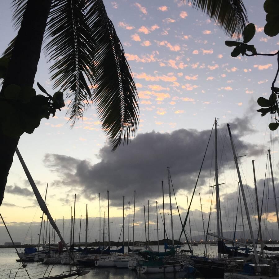 La Mariana Sailing Club Tiki Bar