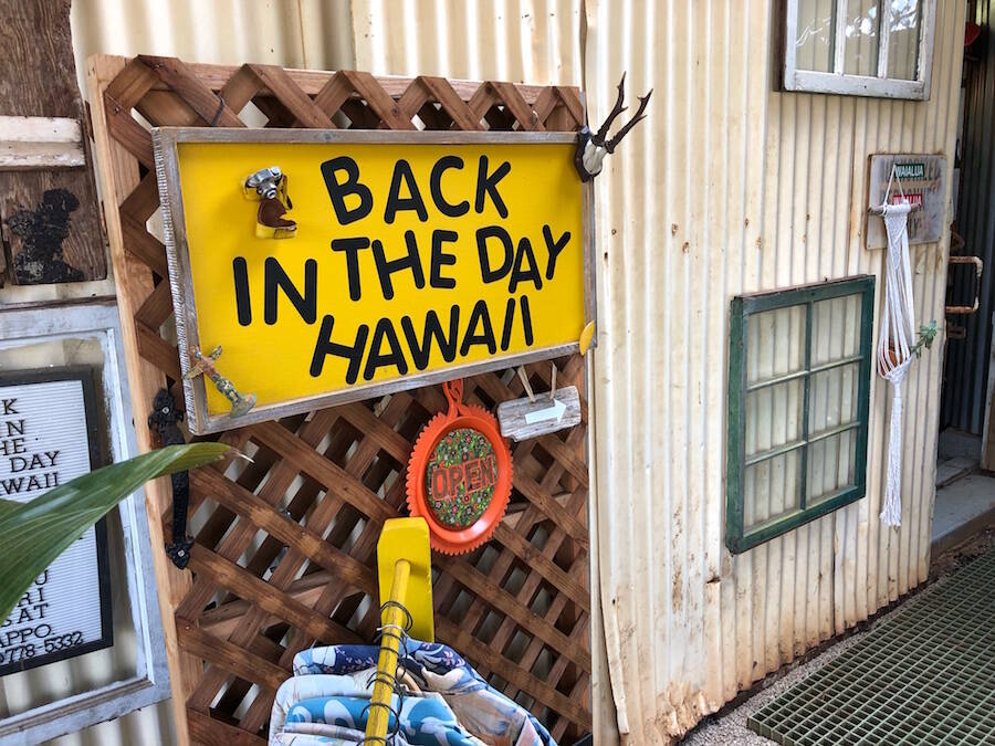 Back in the Day Hawaii Vintage