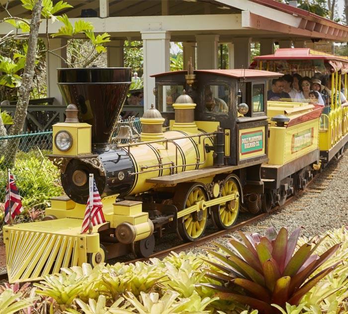 Dole Plantation Train