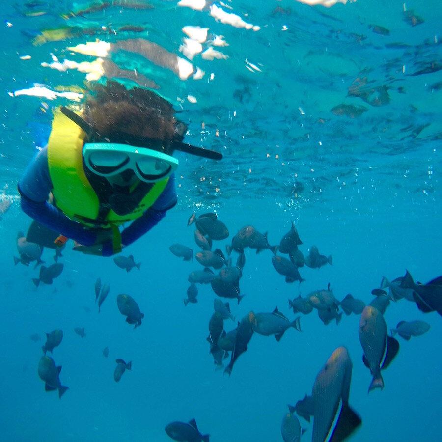 Hawaiian Electric Beach Park Kapolei HI Snorkeling