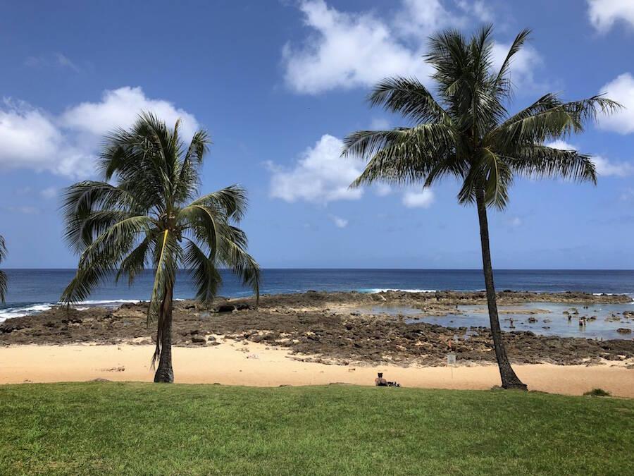 Shark's Cove North Shore Oahu