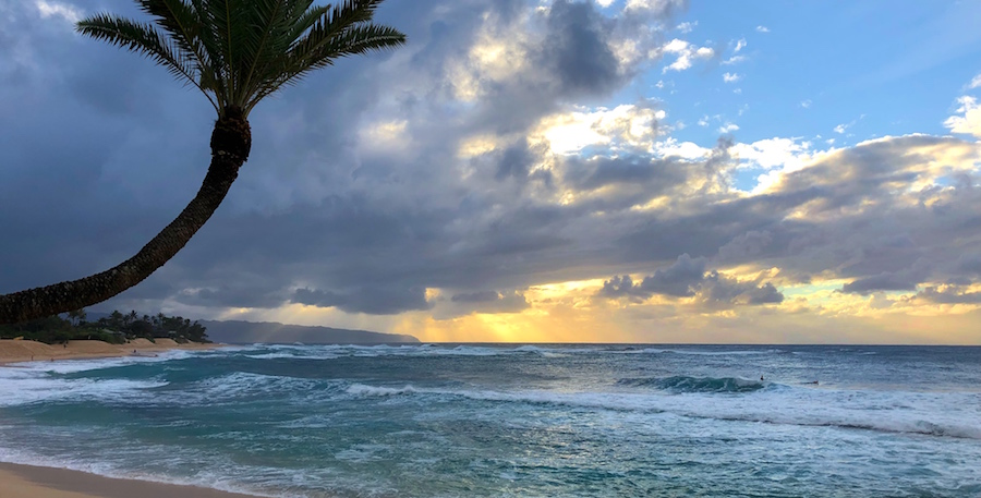 How to Spend a Day on the North Shore Oahu
