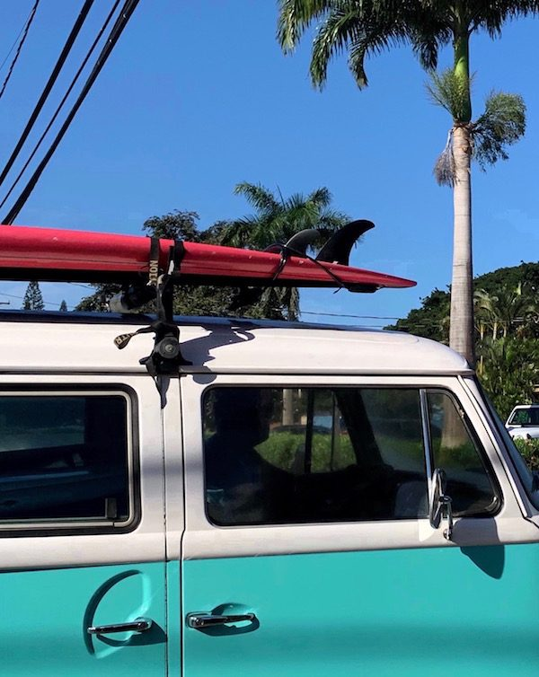 Fun Things to Do in Haleiwa