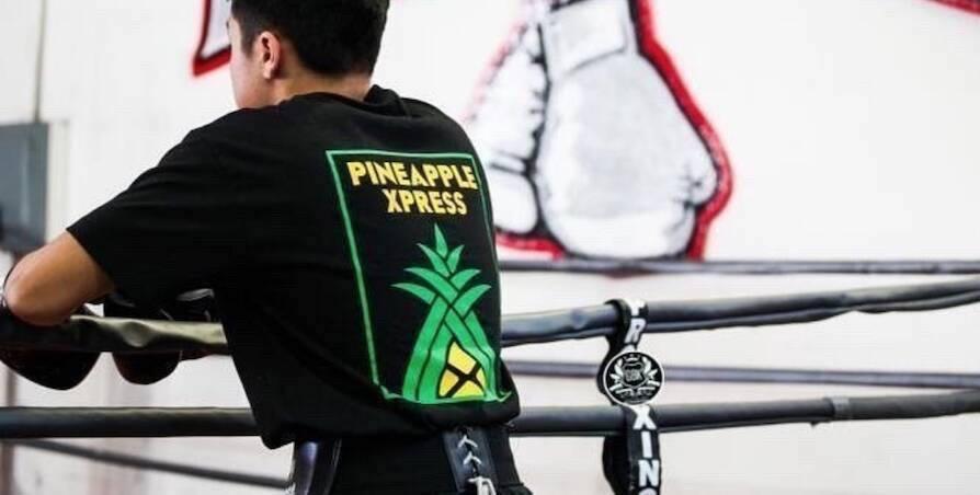 Hawaii Streetwear Brands - Hawaii Urban Clothing Brands
