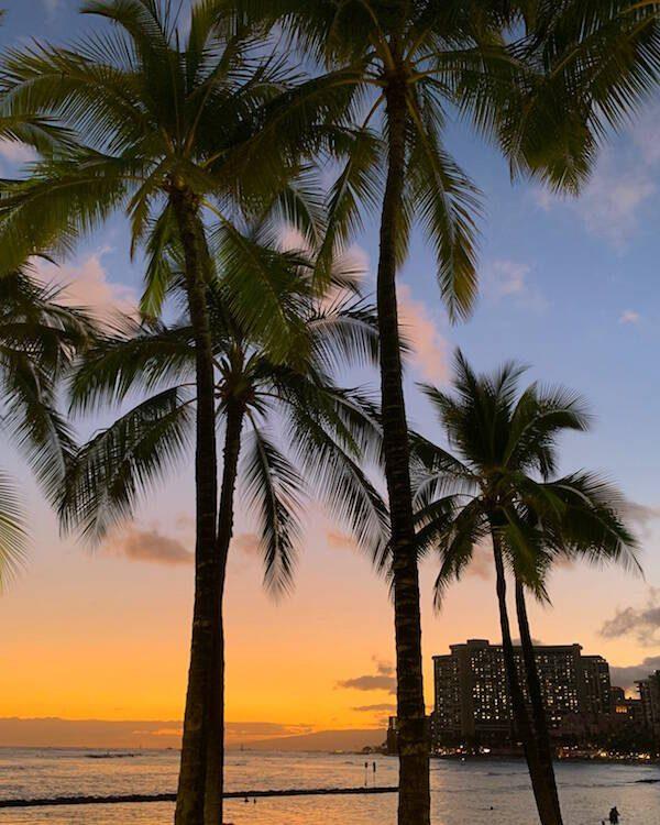 Outrigger Waikiki Beach Resort vs Hilton Hawaiian Village