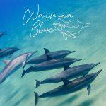 Waimea Blue Gallery